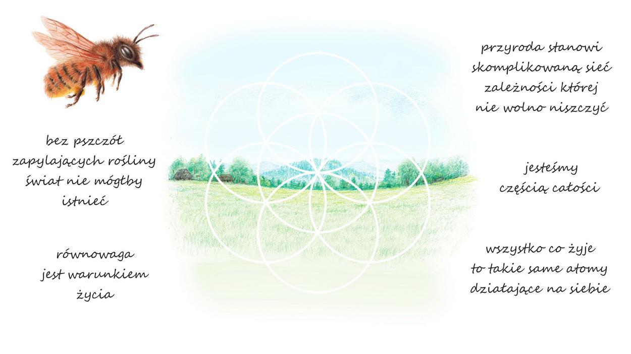 Pszczoły Ekosystem