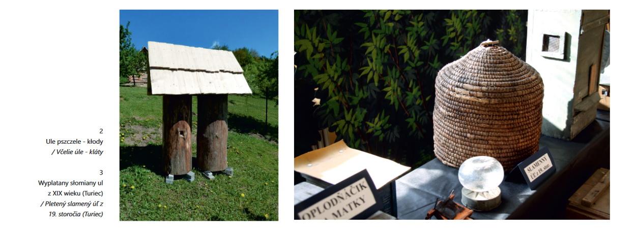 Ule pszczele kłody oraz wyplatany ul z XIX wieku.